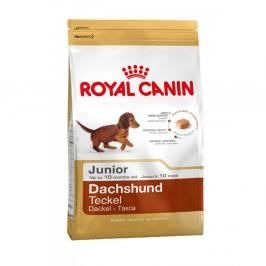 Royal Canin Dachshund (Jezevčík) Junior 1,5kg